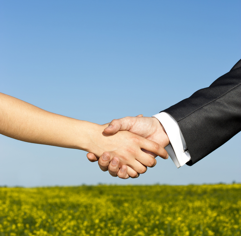 KKR Global Institute Helps Companies Grow Sustainably
