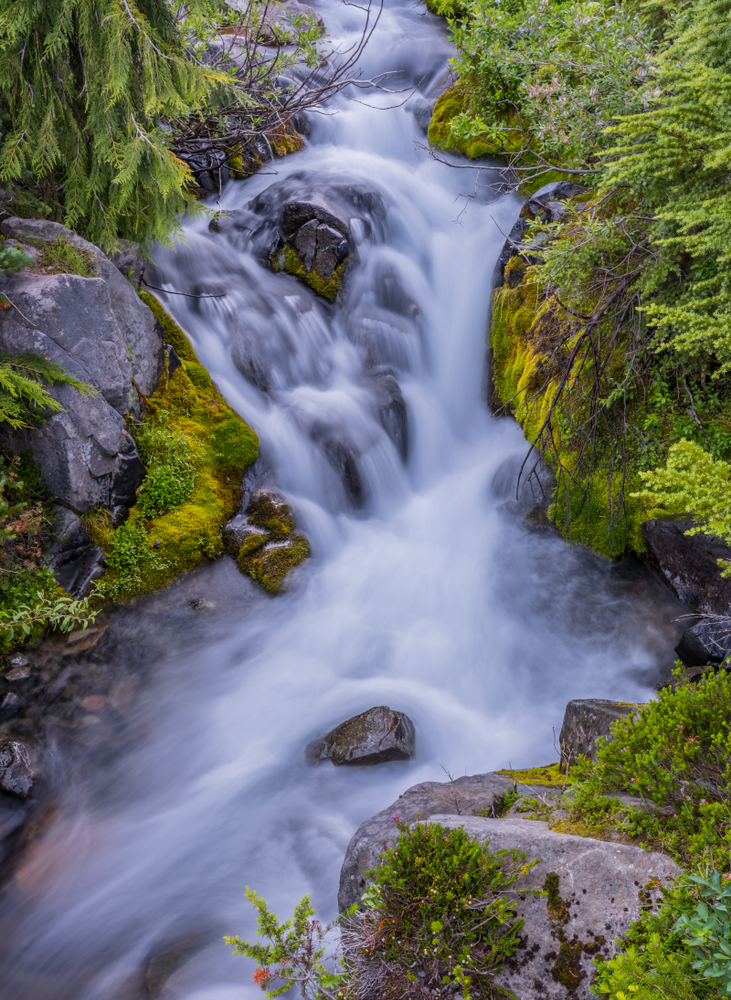 A photo of a waterfall, taken at Mount Rainer National Park in Washington state.
